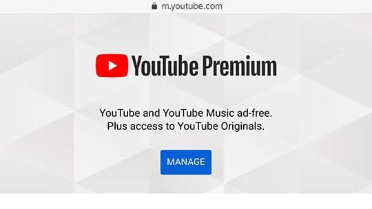 YouTube Tips - Premium