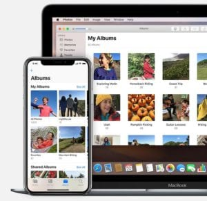 Albums in iCloud Photos