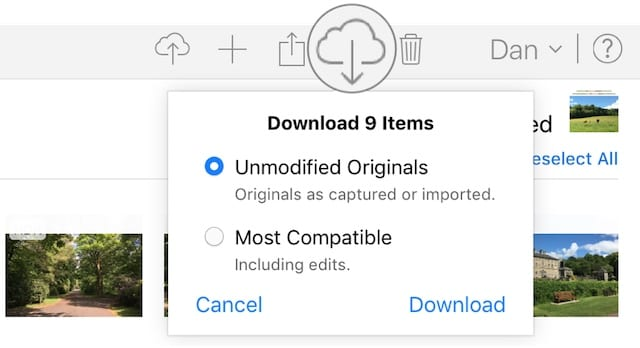 Download option from iCloud website