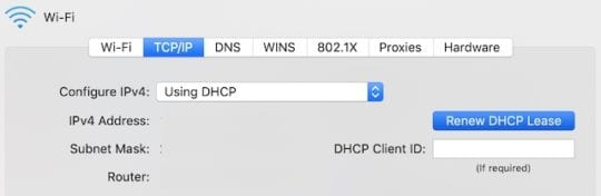 Renew DHCP Lease button