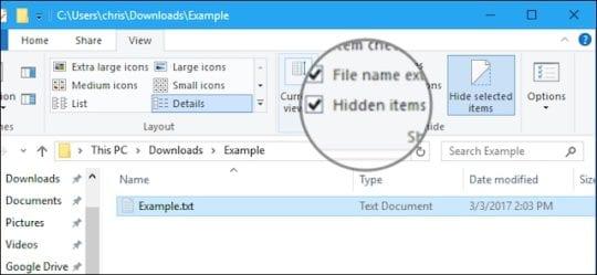 Hidden items tick-box in File Explorer.