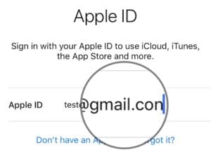 Typo in Apple ID email address