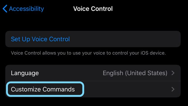 how to customize voice control commands in iOS13 and iPadOS
