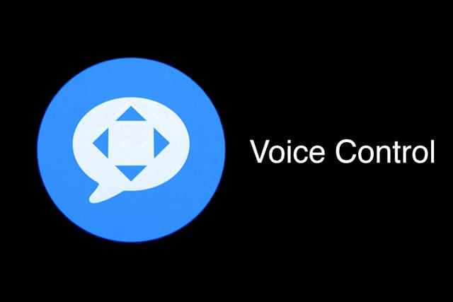 voice control glyph and icon