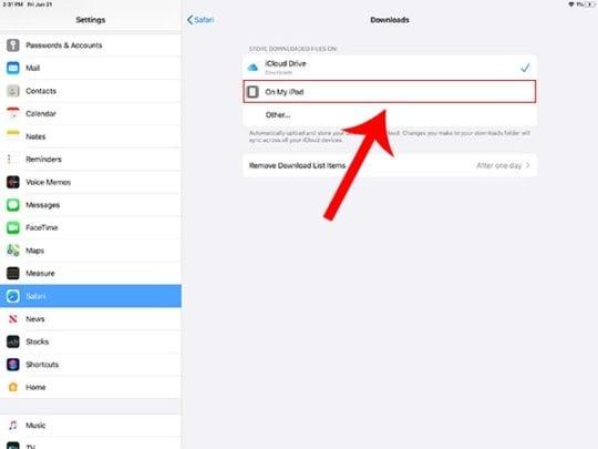 iPadOS Files - Download Manager