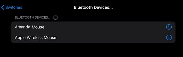 Bluetooth switch control iPadOS devices