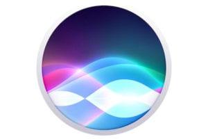 Siri Privacy 3