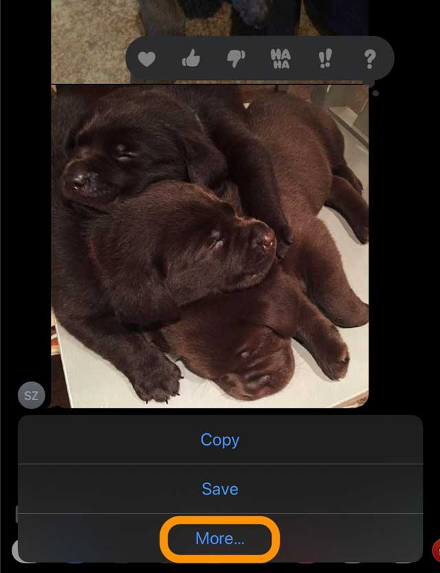 more button in Message app to delete or share photos