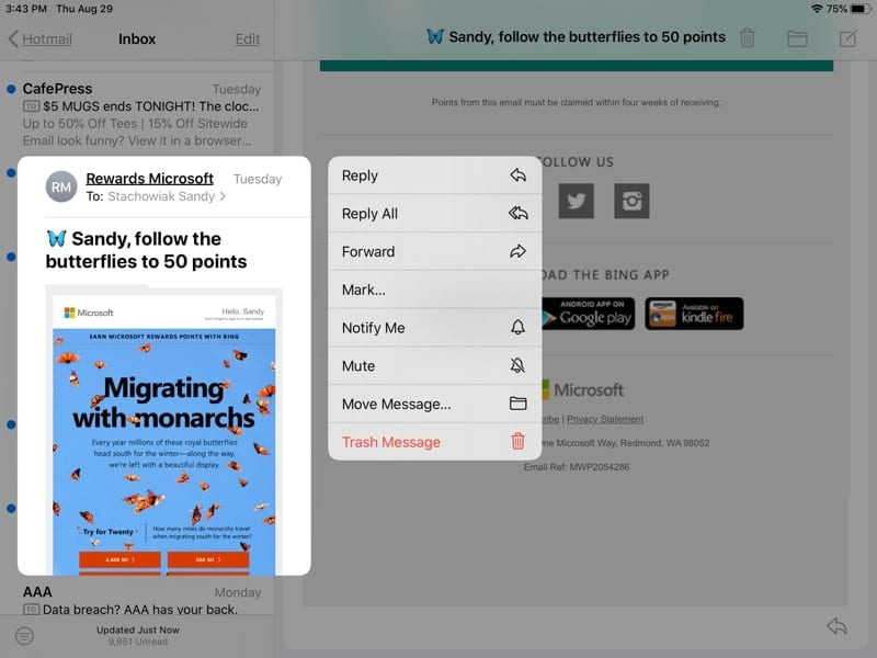 Mute Email Thread iPadOS Mail