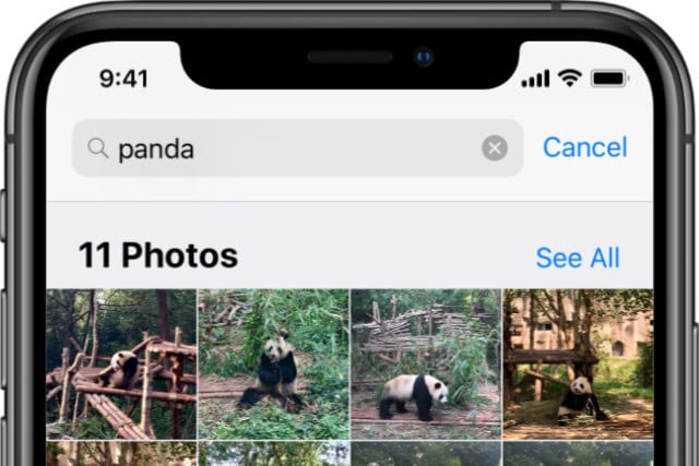 Photos app searching through analyzed library for Panda