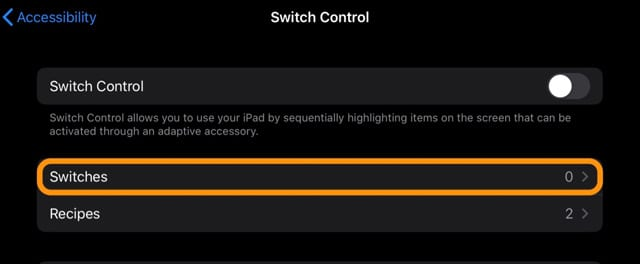 Switches settings in iPadOS Accessibility settings