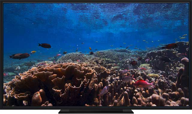 Apple TV screensaver underwater aerial