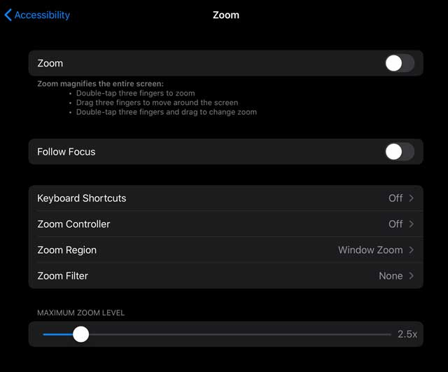 Zoom settings iPadOS