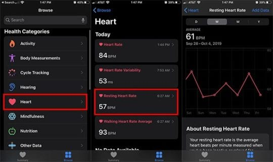Check Resting Heart Rate