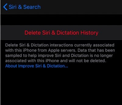 Delete Siri and Dictation history in iOS 13.2
