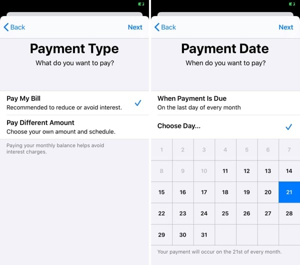 Pick Payment Type and Date