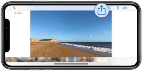Photos app Share button