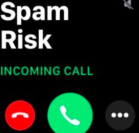 spam risk caller id iPhone