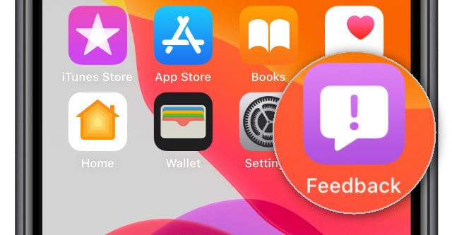Feedback Assistant app on iOS Beta home screen