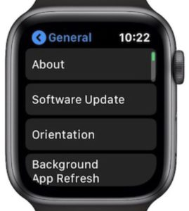 General Settings page from watchOS