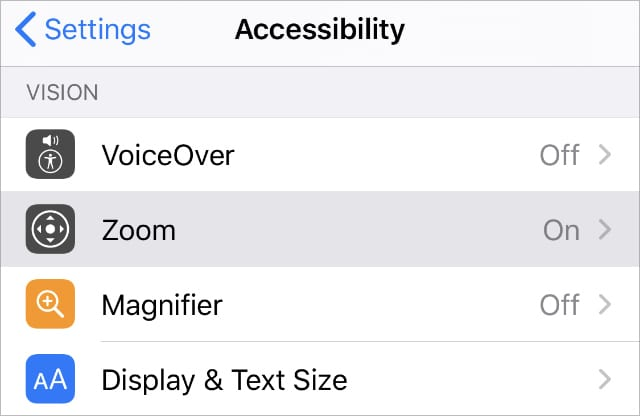 Accessibility Zoom feature in iPhone Settings