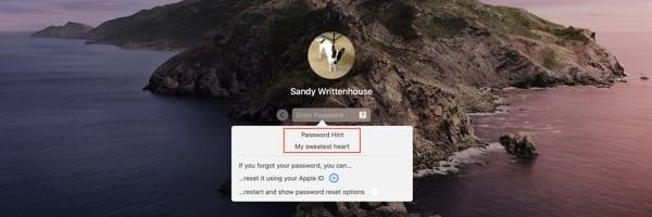 Login Screen Password Hint Mac