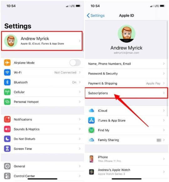 Open Subscriptions from iPhone Settings app
