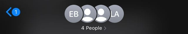 FaceTime group conference call profile icons in Message app