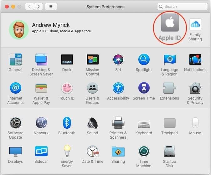 Open Apple ID from System Prefs
