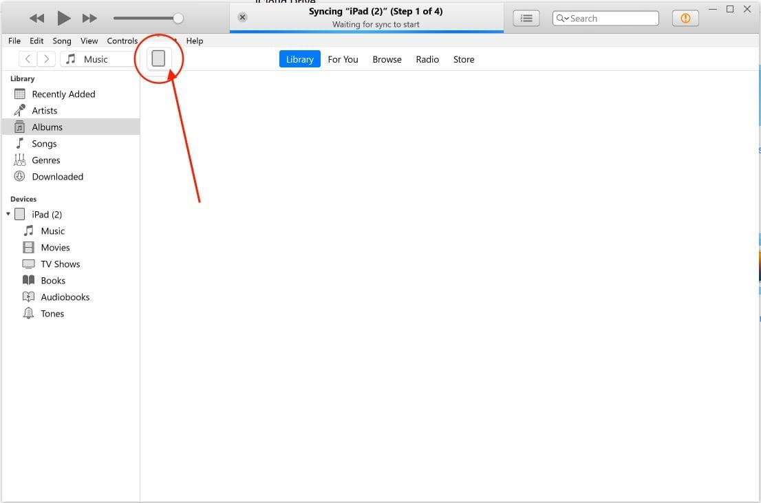 Tap on iPad Logo in iTunes