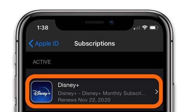 iPhone Disney Plus or Disney+ subscription