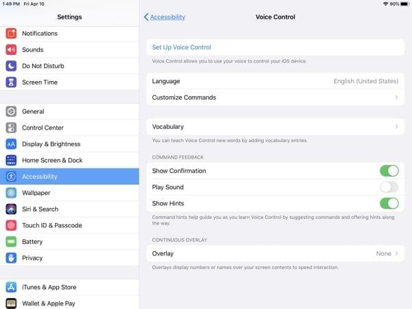 iPad Accessibility-Voice Control