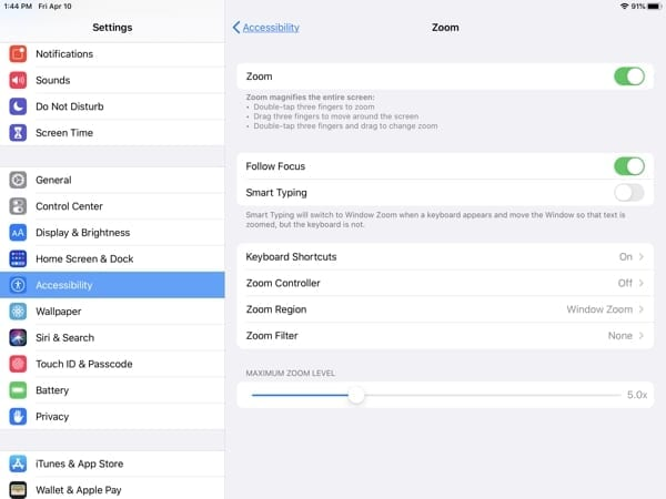 iPad Accessibility-Zoom