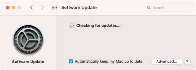 macOS Big Sur Software Update System Preferences checking for updates
