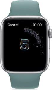 Apple Watch Handwashing timer