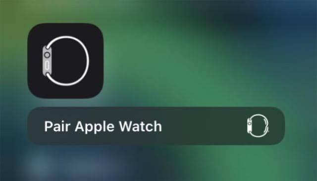 Apple Watch solo band icon