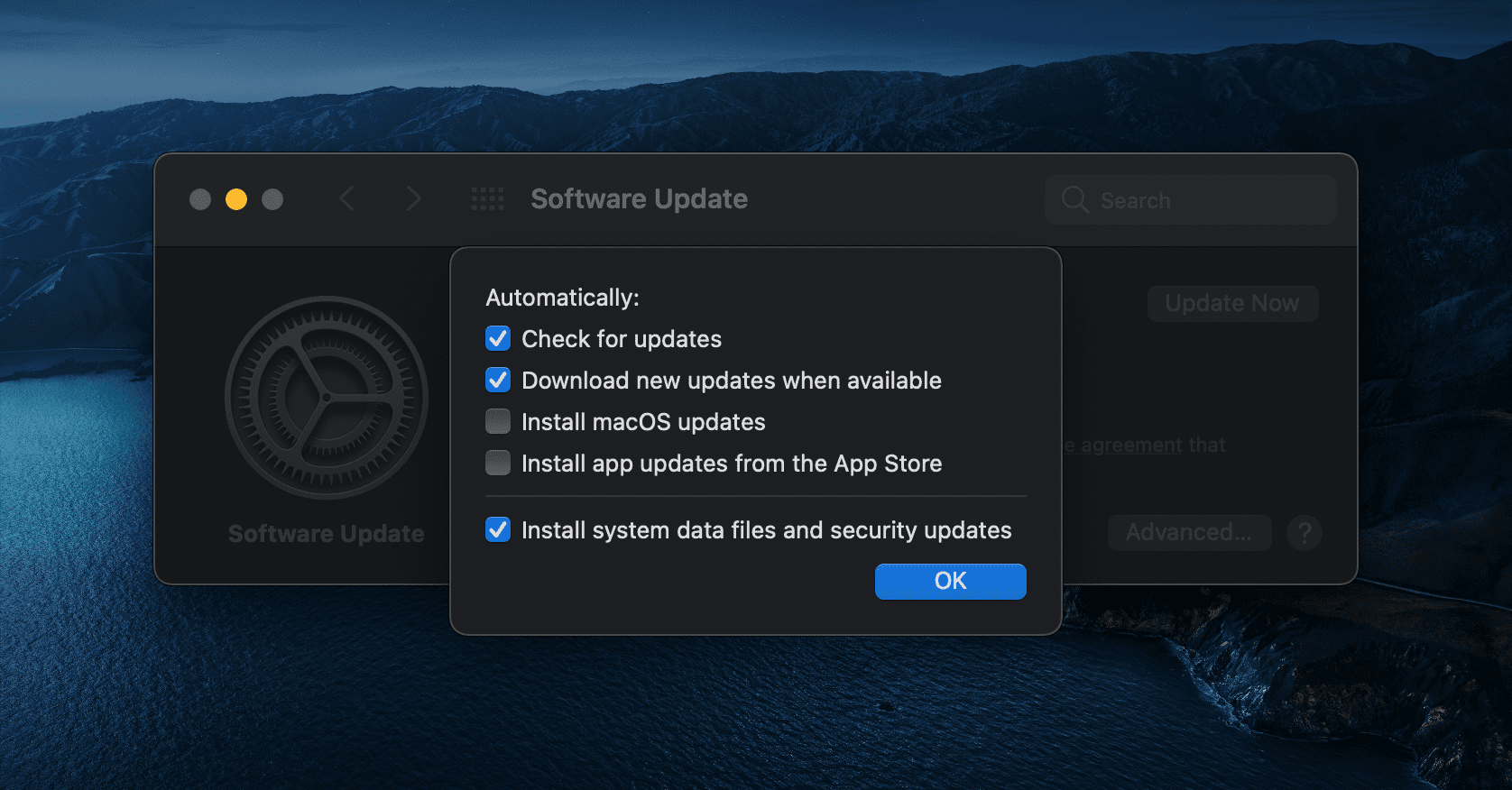 Advanced Software Update Options