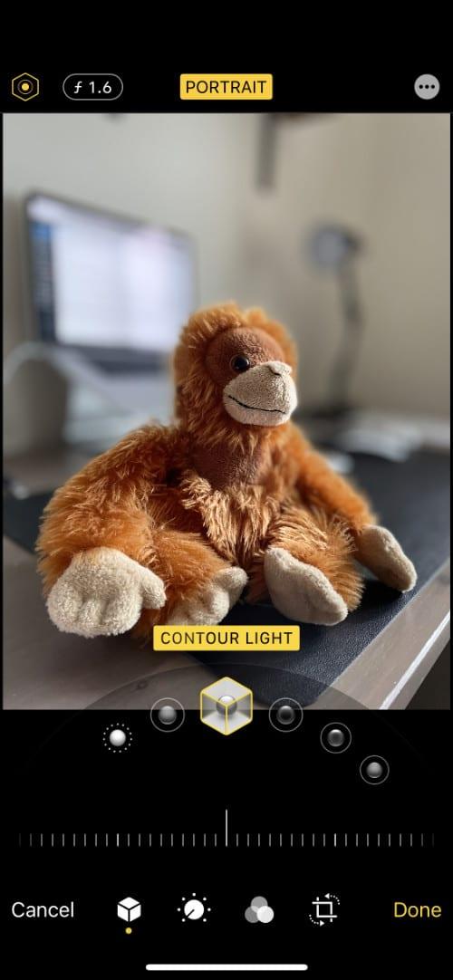 Portrait Photo editing lighting options