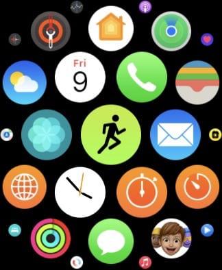 Workout app on Apple Watch.