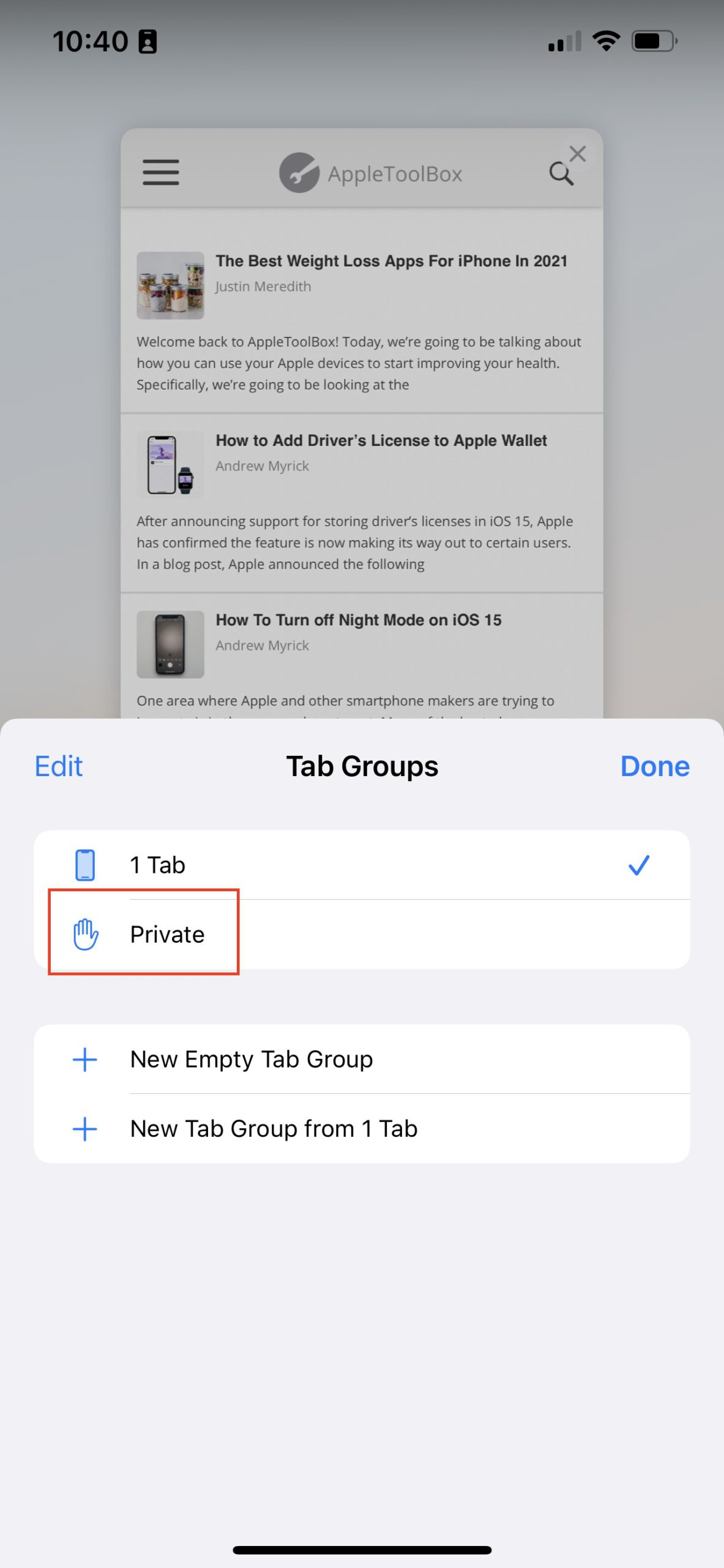 Use Private Browsing Mode on iOS 15 Method 2 - 3